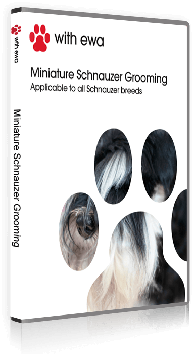 The complete guide to Miniature Schnauzer Grooming DVD