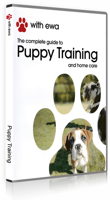 The complete guide to Puppy Training and home care DVD